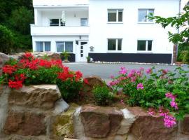 Villa Luise, Hameln