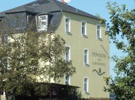 Pension am Elberadweg, Radebeul