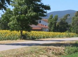 Agriturismo San Luigi, Macchiascandona