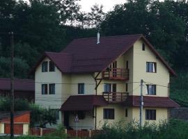 Casa dintre Vii, Jidvei