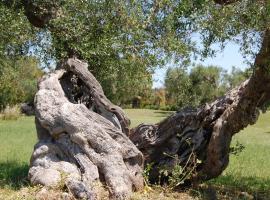 Scalilla L'Agriturismo, Melendugno