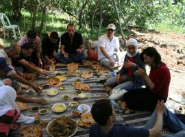 Ajloun Forest Reserve, Jarash