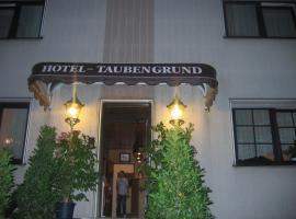 Airport-Hotel zum Taubengrund, Kelsterbach