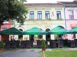 Hotel Villa Bodi, Satu Mare