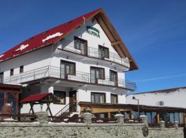 Pension Alpina, Păltiniş