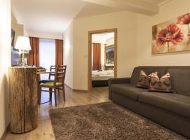 Apartments Schneider, Lutago
