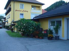 Pension & Ferienwohnung Dullnig, Gmünd in Kärnten