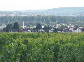 Ferienwohnung Weingut Leis, Oestrich-Winkel