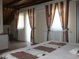 Rooms & Apartment Vinia, Letičani