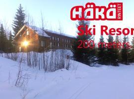 Findomik Cottages, Hankasalmi
