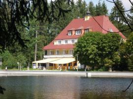 Hotel Waldsee, Lindenberg im Allgäu