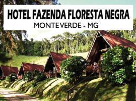 Hotel Fazenda Floresta Negra, Monte Verde