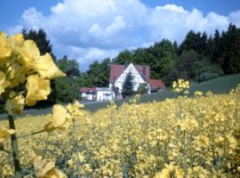 Holiday home Sonnenberg, Willingen