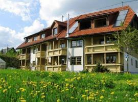 Apartment Bernaublick 1, Bernau im Schwarzwald