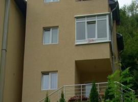 Accommodation Dincic, Ribarska Banja