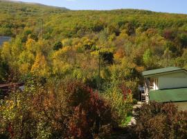 Near The Mountain River, Sokolinoye