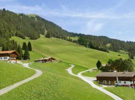 Salvenalm, Hopfgarten im Brixental