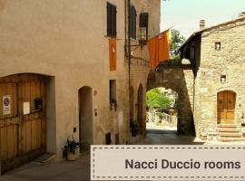 Duccio Nacci Rooms, 산지미냐노