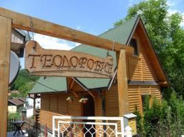 Holiday Home Bungalow Teodorovic, Gornja Trepča