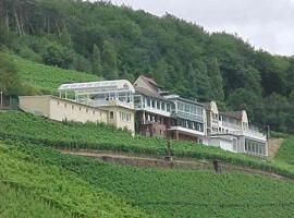 Panorama Hotel und Restaurant Schloßberg, Alzenau in Unterfranken