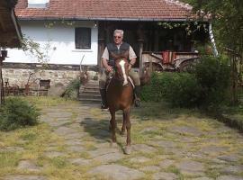 Donkovski Han, Elena