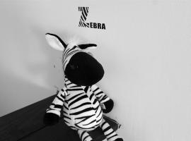 Mr. Zebra Hostel, Chengdú