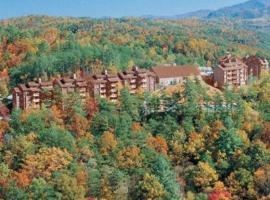 Deer Ridge Mountain Resort, Pittman Center