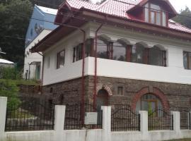 Casa Olguta, Sinaia