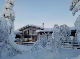 Villas Karhunpesä, Saariselka
