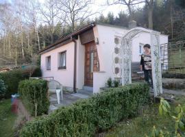 Holiday home Camillo-Schumann-Str. J