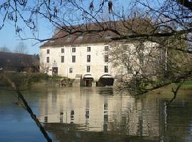 Moulin de Bourgchateau, Louhans