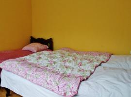 Leo's homestay/Guesthouse, Borjomi