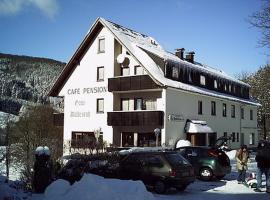 Cafe-Pension Waldesruh, Willingen