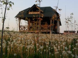 Vigio Brasta camping, Elektrėnai