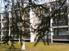 Rapilankatu Apartment, Joroinen