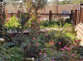 Olive Gardens Resort, Anfah