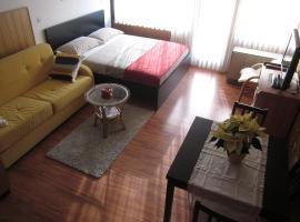 Apartment Bilobrk, Kranjska Gora
