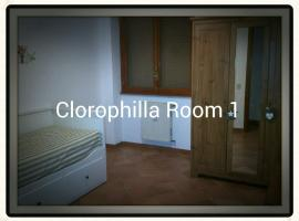 Clorophilla Room, La Romanina