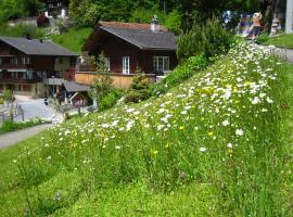 Ferienhaus Brienz, Brienz