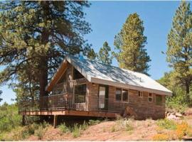 Mountain Escape Cabin Holiday Home, Old La Sal