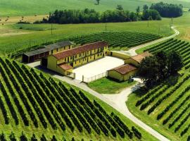 Wine Dreams Holiday Home, Pontestura