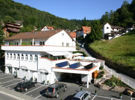 Gästehaus zum Löwen, Heidelberg