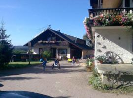 Willmannshof, Furtwangen