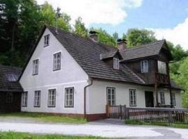 Ferienhaus in der Steiermark, Ratten