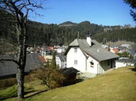 Ferienhaus im Joglland, Ratten