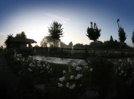 Le Soleil, Vigone