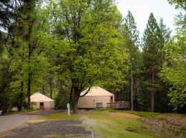 Yosemite Lakes Hillside Yurt 2, Harden Flat