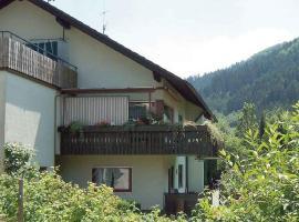 Haus Schnurr, Wolfach