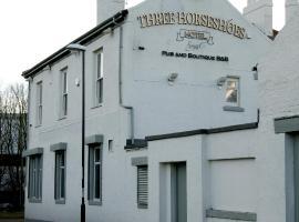 The Three Horseshoes Hotel, Σάντερλαντ