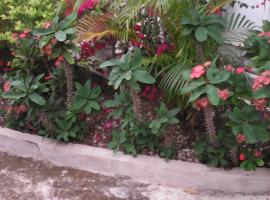 Jamaica Stay, Montego Bay